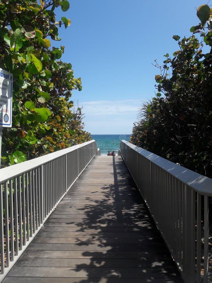Drewniana Plażowa ścieżka w Floryda obraz stock