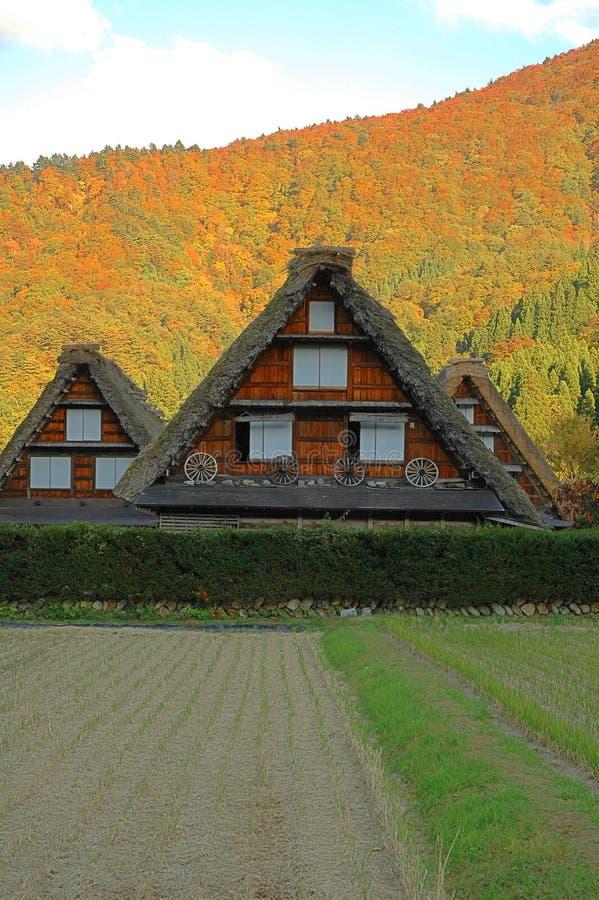Drewniana pokrywająca strzechą dom wiejski jesień obraz stock
