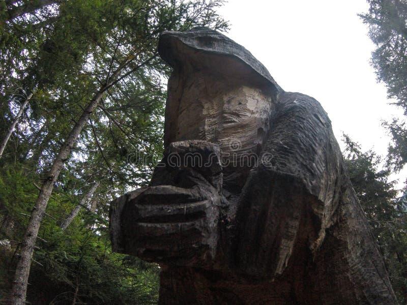 Drewniana postać w drewnach zdjęcie royalty free