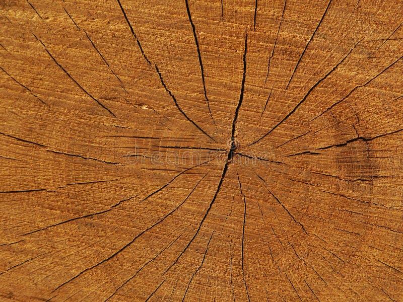Drewniana struktura obraz stock