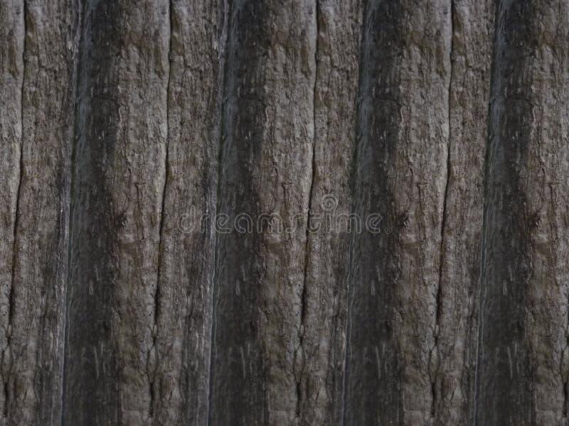 Drewniana tekstura obraz royalty free