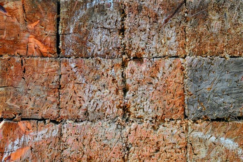 Drewniana tekstura cel z białą sylwetką mężczyzna Cel dla rzucać z śladami, narysy, dziury stara powierzchni obrazy royalty free