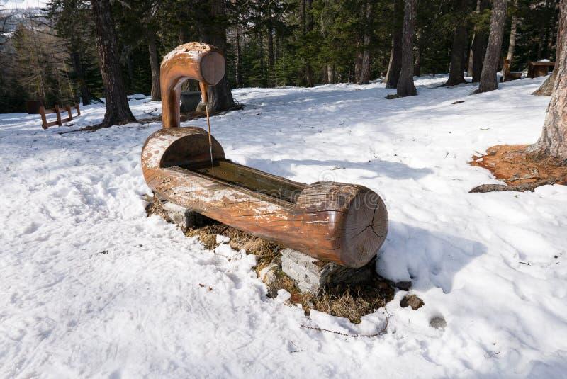 Drewniana wodna synklina w śnieżnym lesie zdjęcia royalty free