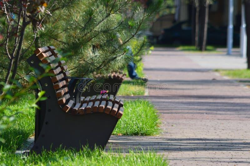 Drewniane ławki w kwadracie obrazy royalty free