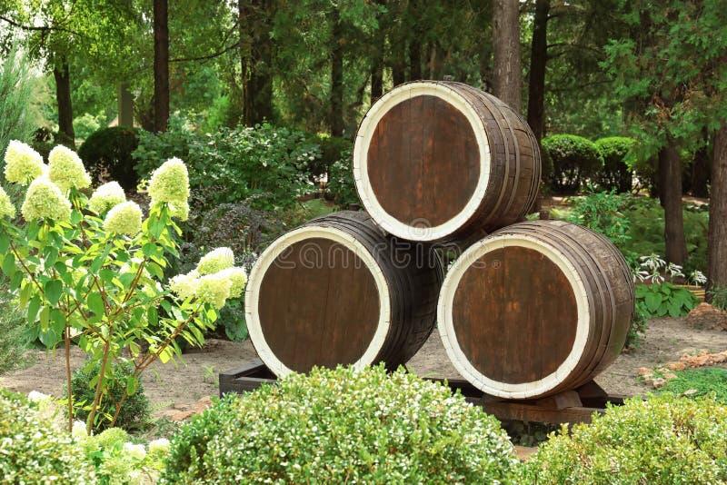 Drewniane baryłki z winem, obraz stock