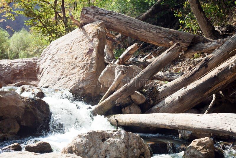 Drewniane bele i woda zdjęcia stock
