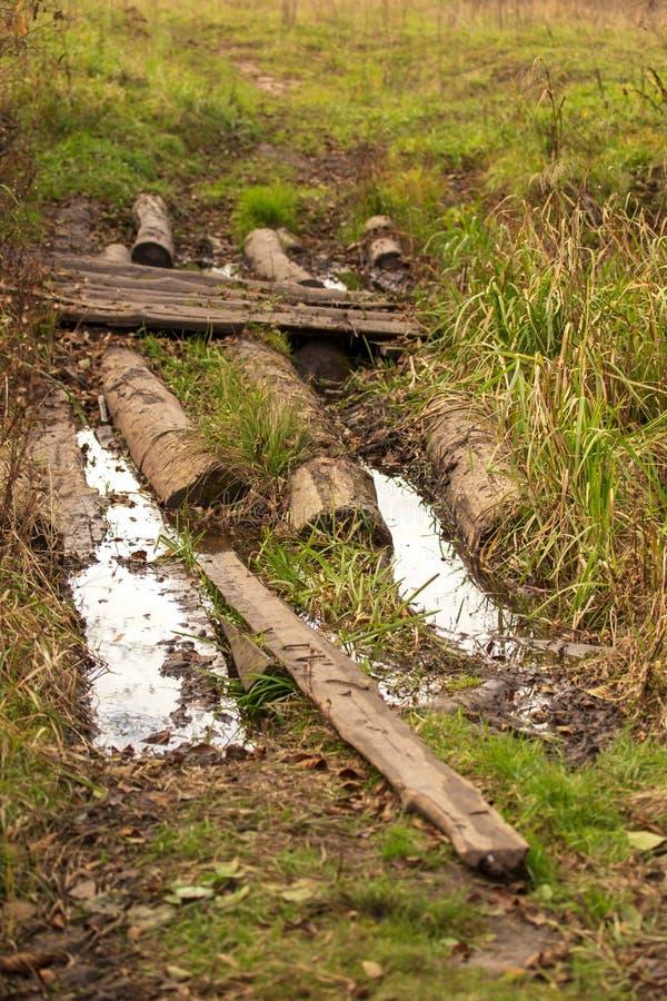 Drewniane bele jako most na rzece fotografia royalty free