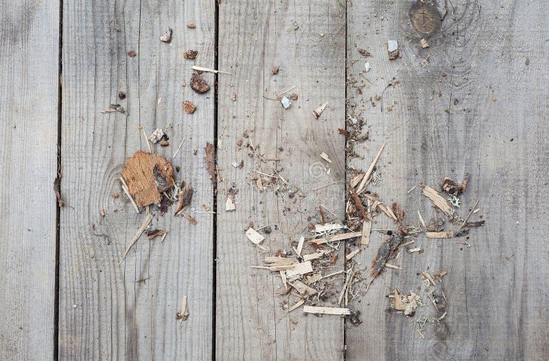 Drewniane deski i trociny obraz stock