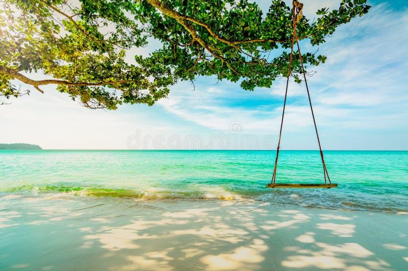 Drewniane huśtawki wieszają od gałąź drzewo przy nadmorski Szmaragdowej zieleni woda morska z niebieskim niebem i bielem chmurnie obrazy royalty free