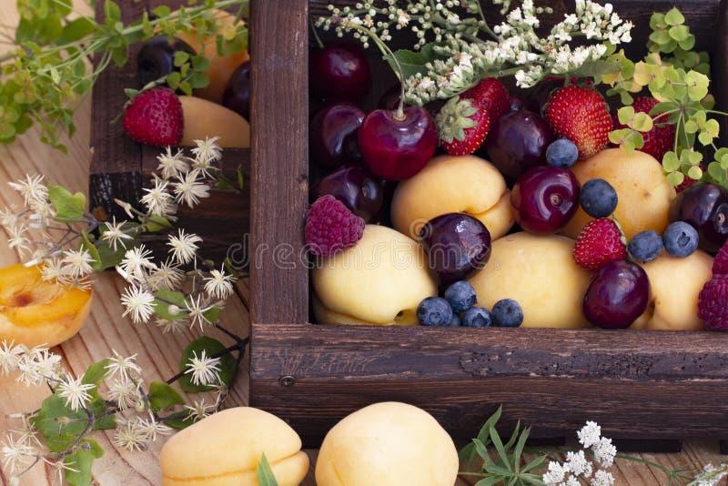 Drewniane pudełko ze świeżymi jagodami i owocami letnimi Borówki, wiśnia, truskawki, maliny, morele, lasy obraz royalty free