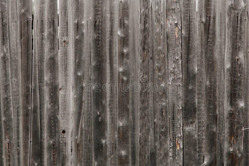 drewniane tekstury zdjęcia royalty free