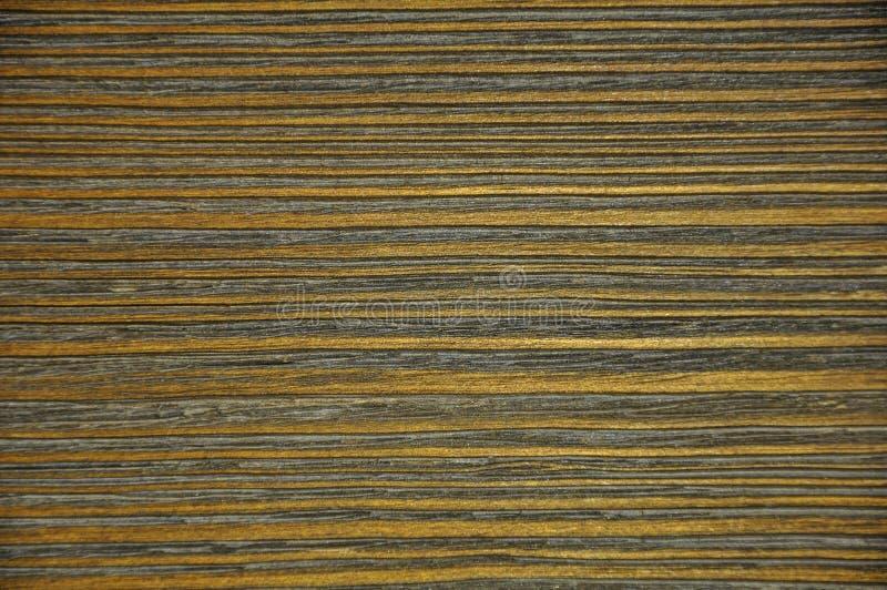 drewniane tekstury tekstury ulga Trakeny stały drewno zdjęcie stock