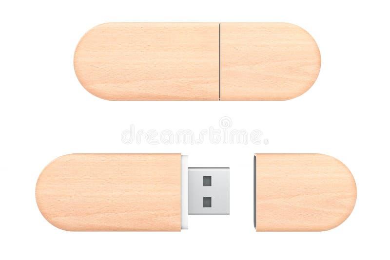 Drewniane USB Błyskowej pamięci przejażdżki świadczenia 3 d ilustracja wektor
