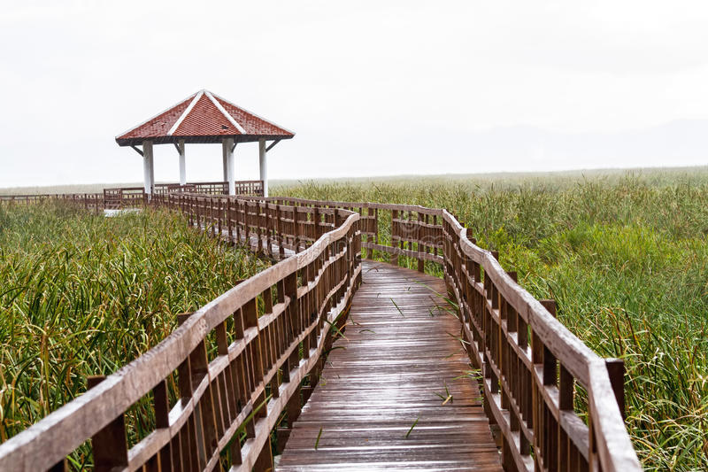 Drewnianego mosta i pawilonu jezioro na kropli pada w Sam Roi Yot fotografia stock