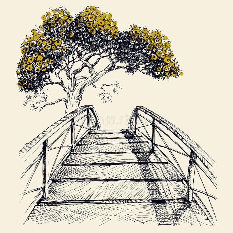 Drewnianego mostu łuk i kwitnący drzewo ilustracja wektor