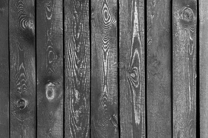 Drewnianej deski strzału puszek z rzędu zdjęcie royalty free