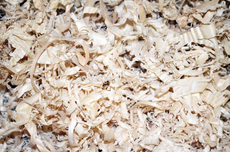 drewniani biomass golenia Sosnowego drewna odpryskiwania obraz stock