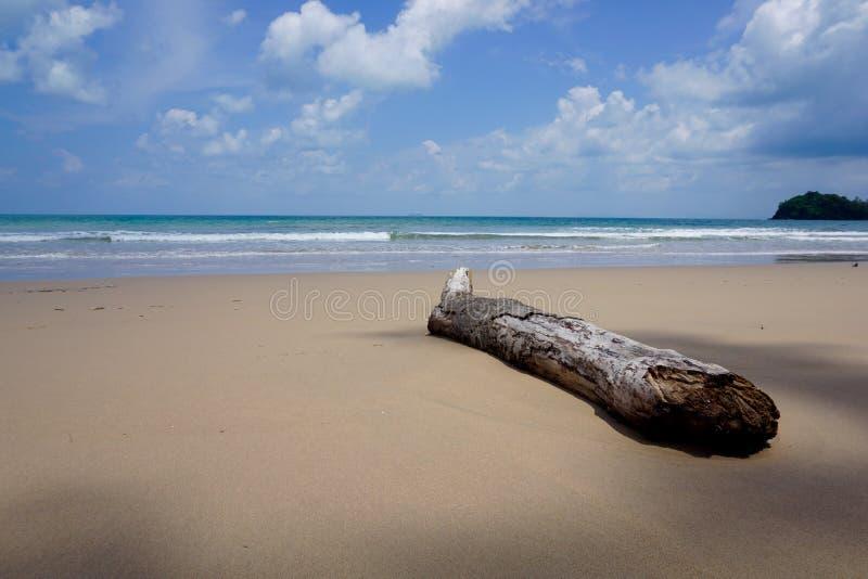 Drewniani cienie na piasku zdjęcia stock