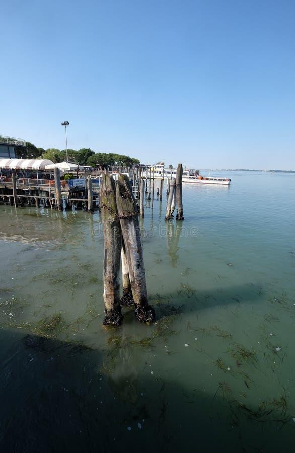 Drewniani cumowniczy słupy w morzu na sposobie od Lido Di Jesolo Wenecja obrazy royalty free