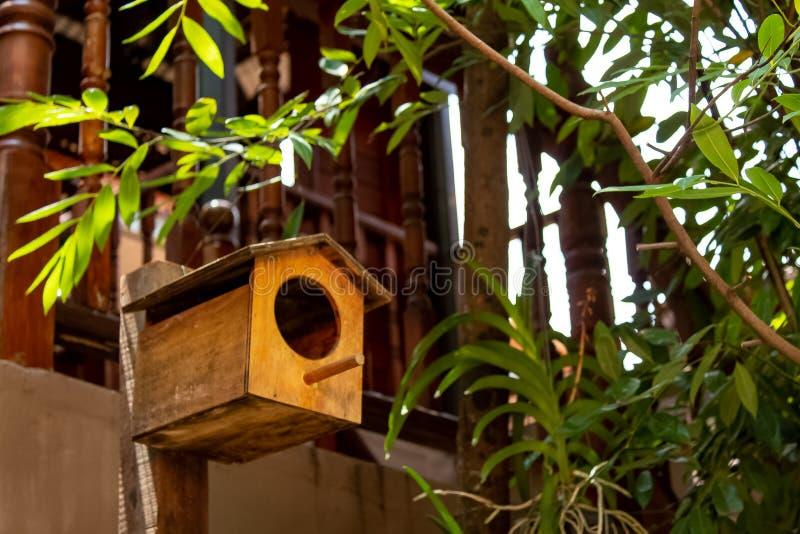 Drewniani domy dla ptaków w twój ogrodowej dekoraci zdjęcie royalty free