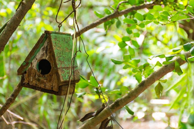 Drewniani domy dla ptaków w twój ogrodowej dekoraci obrazy stock