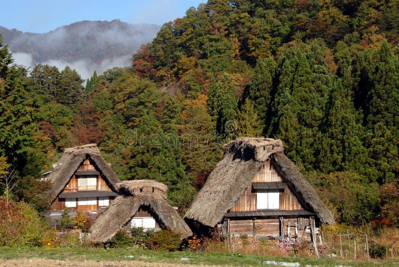 Drewniani pokrywający strzechą domy wiejscy zdjęcia royalty free
