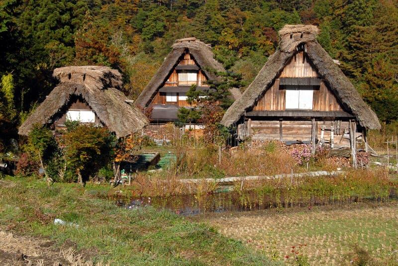 Drewniani pokrywający strzechą domy wiejscy obraz royalty free