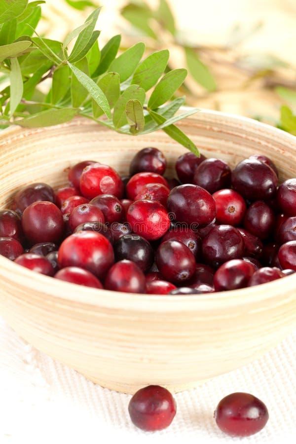 drewniani pucharów cranberries zdjęcia stock