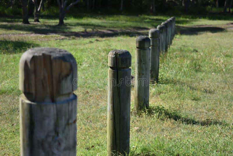 Drewniani słupy w parku fotografia stock