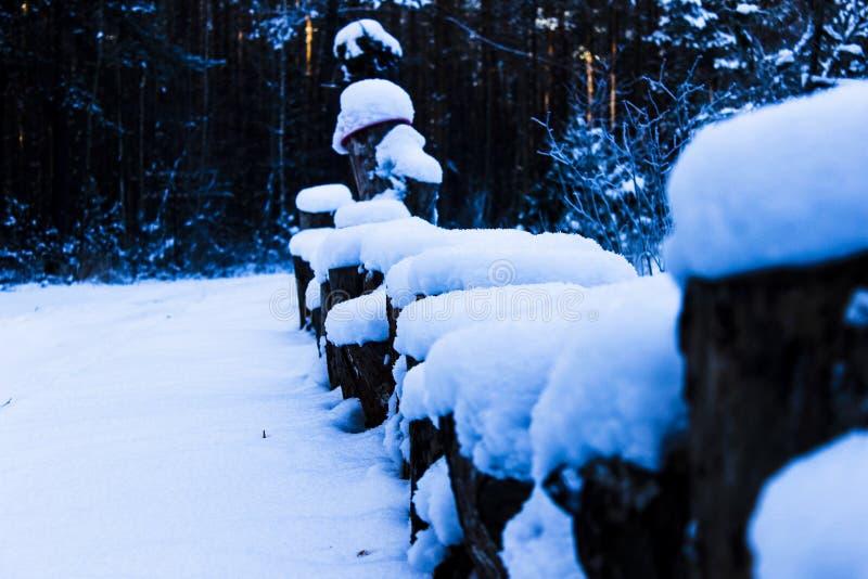 Drewniani sosnowi fiszorki pod śniegiem zdjęcie royalty free