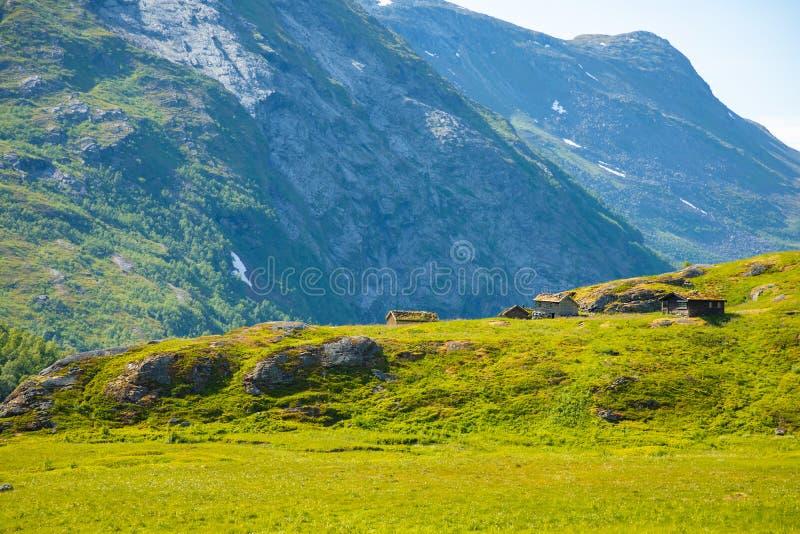 Drewniani starzy domy w górzystym regionie są rosnący halny Dalsnibba, Norwegia fotografia royalty free
