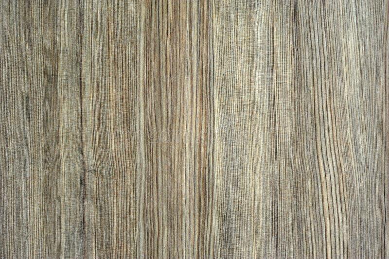 Drewniani Tła obraz stock