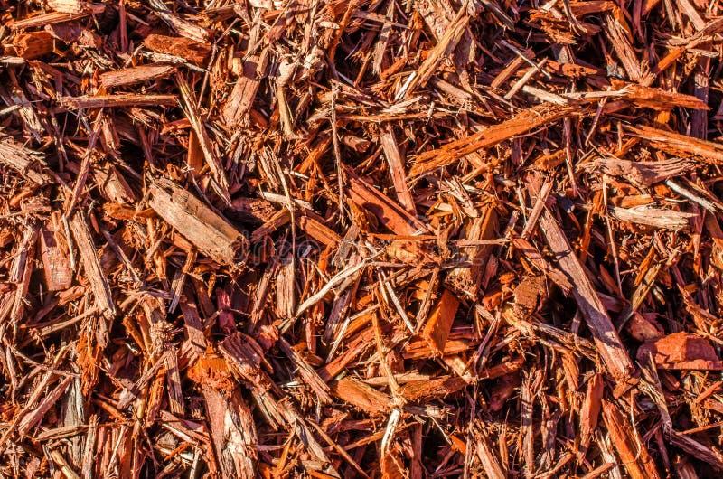 Drewniani układy scaleni, chochoł lub piękno barkentyna, obraz royalty free