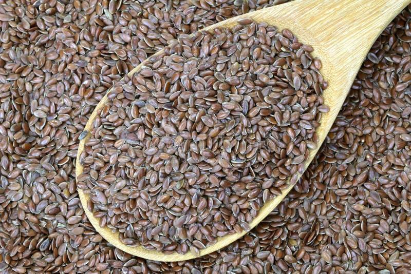 Drewniany łyżkowy pełny Linseed (Flaxseed) zdjęcie stock