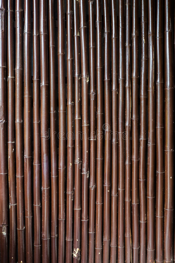 Drewniany Bambusowy t?o zdjęcie stock