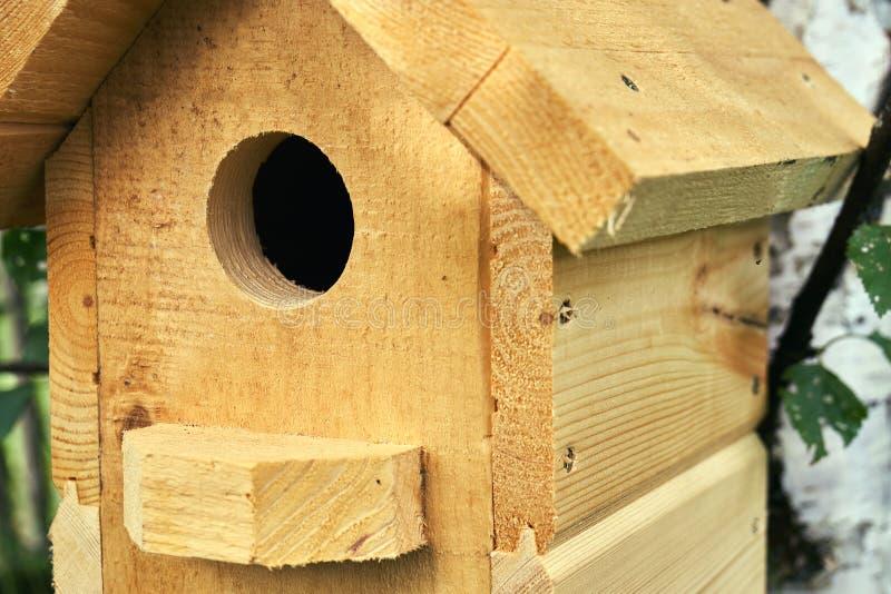 Drewniany birdhouse na brzozy drzewie w lesie w lata zakończeniu up zdjęcia stock