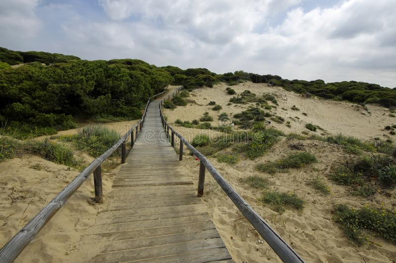Drewniany boardwalk przez diuny prowadzi El Portil plaża, Huelva, Andalusia, Hiszpania fotografia royalty free