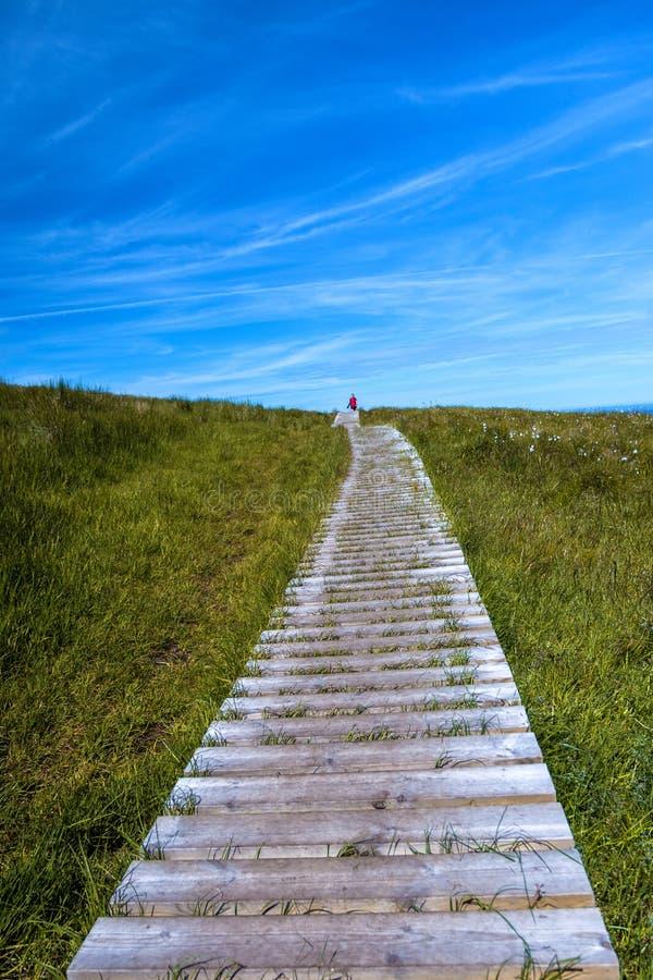 Drewniany boardwalk, zielona trawa i niebieskie niebo, fotografia royalty free