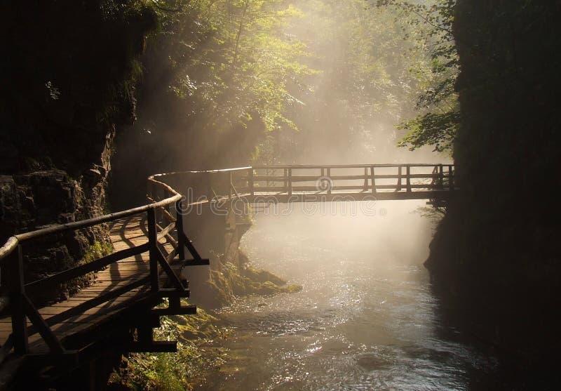 drewniany bridżowy nożny mglisty ranek fotografia royalty free
