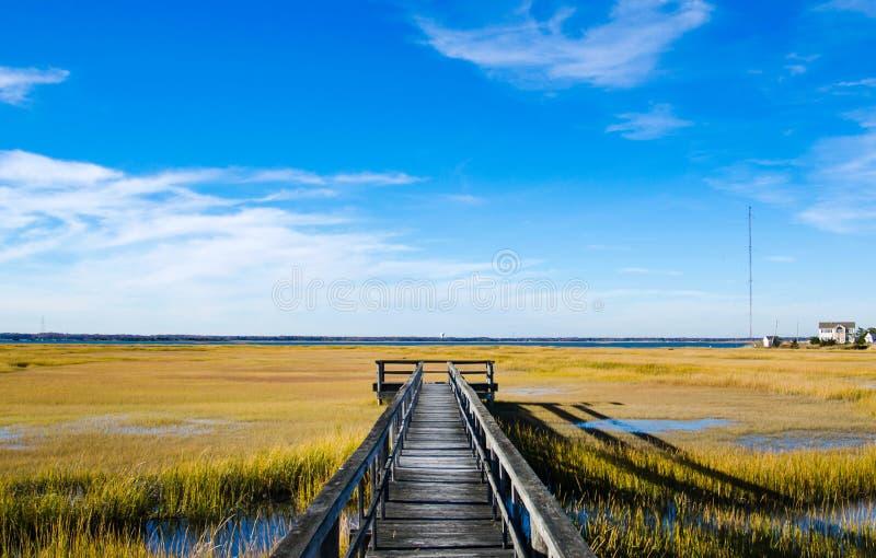 Drewniany dok na bagnie z niebieskim niebem fotografia royalty free