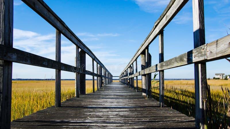 Drewniany dok na bagnie z niebieskim niebem fotografia stock