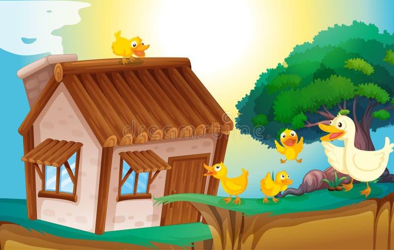 Drewniany dom i kaczki ilustracja wektor