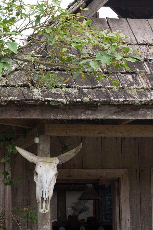 Drewniany dom Oxapampa obraz stock
