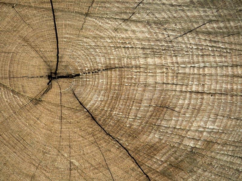 Drewniany fiszorka tło obraz stock