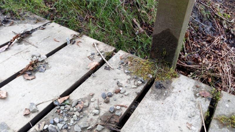Drewniany Footbridge zdjęcie stock
