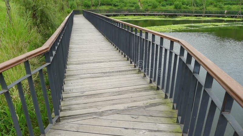 Drewniany Footbridge zdjęcie royalty free