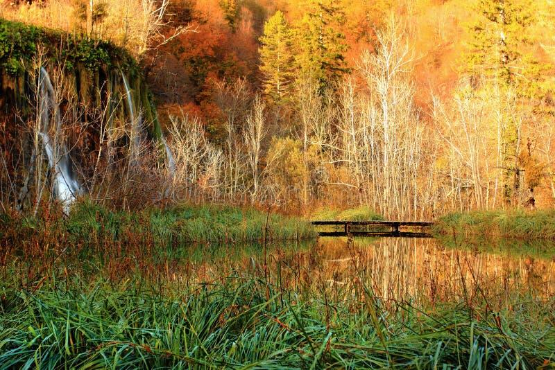Drewniany Footbridge zdjęcia royalty free