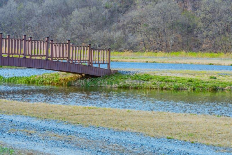 Drewniany footbridge nad stawem zdjęcie royalty free