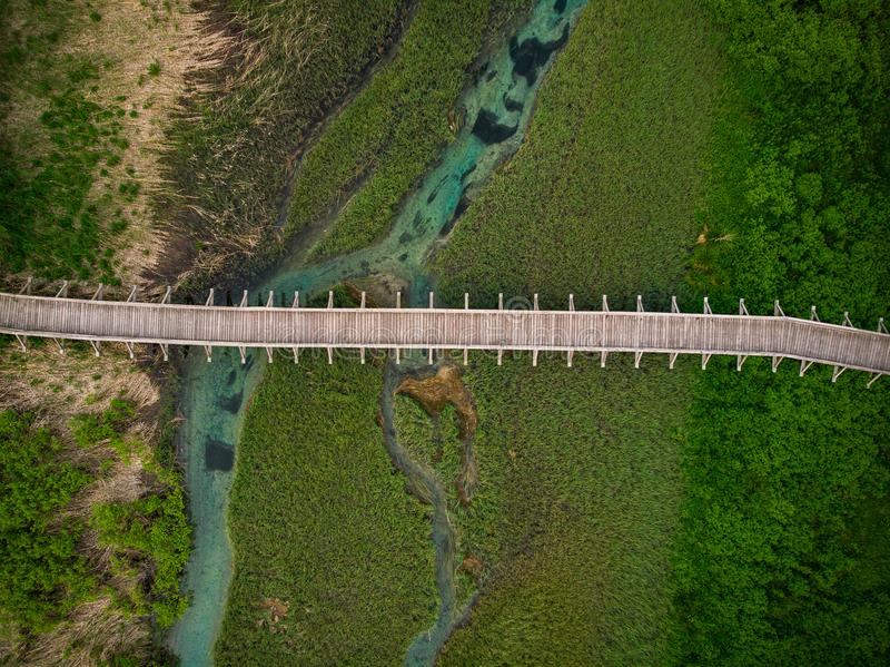 Drewniany footbridge w Zelenci Naturalnej rezerwie, Slovenia obrazy stock
