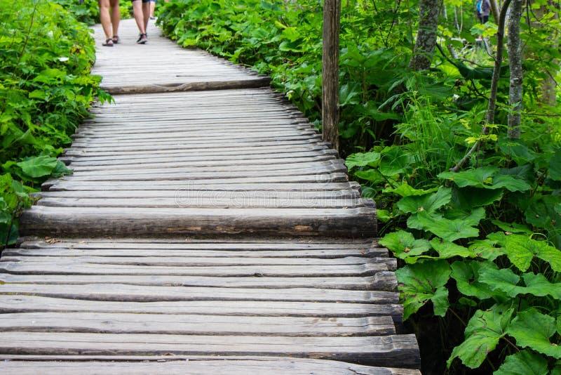 Drewniany footpath przez Plitvice jezior parka narodowego zdjęcie stock